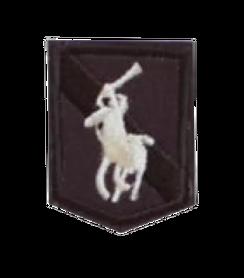 Naprasowanka / aplikacja TERMO 4 x 3 cm HERB z koniem