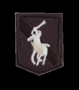 Naprasowanka / aplikacja TERMO 4 x 3 cm HERB z koniem (1)
